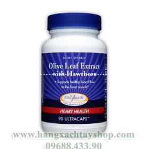 New0017enzymatic-therapy-olive-leaf-extract-hangxachtayshop