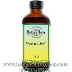 alternative-health-&-herbs-remedies-mustard-seed-hangxachtayshop