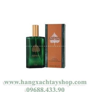 aspen-by-coty-for-men-cologne-4-oz-hangxachtayshop