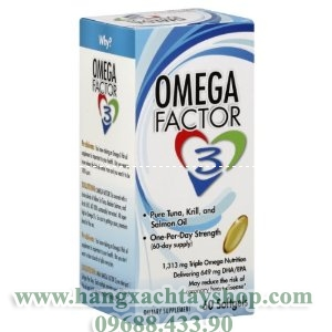 focus-factor-omega-factor-3