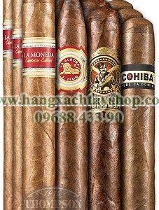dominican-dynamite-dozen-cigar-sampler-hangxachtayshop
