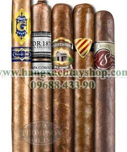 five-pack-madness-cigar-sampler-xii-hangxachtayshop