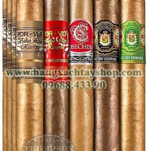 world-class-twenty-sampler-hangxachtayshop